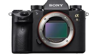 Sony lança uma atualização de firmware para a série α9, que inclui a função Real-Time Eye AF para animais, captação em intervalos e compatibilidade com RMT-P1BT