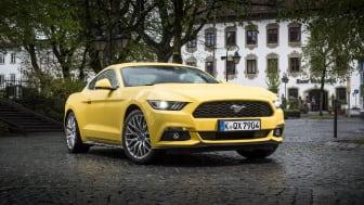 Mustang Germany