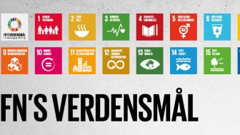 Lekolars arbejde med FN's verdensmål
