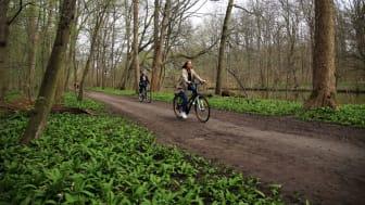 Fahrradtour - Rad-Erlebnistag