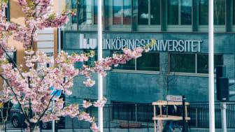 Sommartips från Linköpings universitet