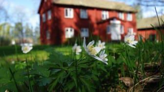 Försäljningarna går snabbt. Hela 21 procent av de svarande uppger att ett småhus säljs inom en vecka från första visning.