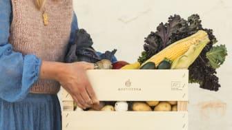 Uppfyller matkasseföretagen kraven för kycklingvälfärd?