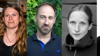 Jessica Abbott, Johan Eklöf, Anna Froster och Fredrik Moberg.