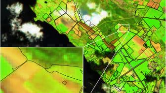 Exempel på hur en bild tagen av en Sentinel-satellit kan se ut. Källa: Europeiska rymdstyrelsen, ESA