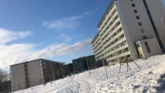 FERIE: Denne uken er det vinterferie, også i Bydel Stovner.