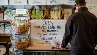 Stora Tollby gårdsbutik Fole, Gotland