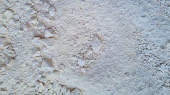 Torkat urin har blivit växtnäring i pulverform
