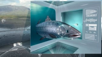 iFarm monitors each salmon using machine vision, establishing a health record for each individual, and can sort aside the fish that needs follow up