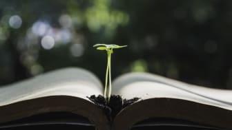 Sök stipendium för jord- eller skogsbruksutbildning
