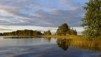 Sjön Öjaren i Sandviken. Foto: Johan Strandberg