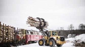 Inlandståg blir Norra Skogs primära leverantör för leveranser på tåg av rundvirke