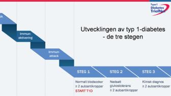 Tre steg i utvecklingen av diabetes typ 1