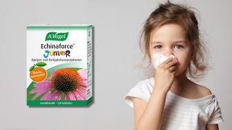 A. Vogel Echinaforce Junior hjelper ved forkjølelsessymptomer.