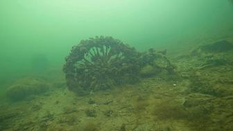 Fotot är taget under en av dykningarna som gjorts i samband med uppsamlingen av nästan två ton skräp från Malmös hav, kanaler och vattennära miljöer. Foto: Marint Kunskapscenter