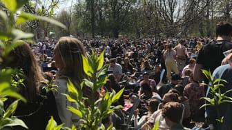 Pressinbjudan: inför valborg i Stadsparken
