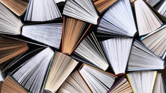 Nuvarande regelverk är ovärdigt, ett nytt system måste till. Foto: urra (AdobeStock.com)