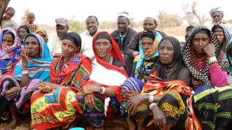 Bymöte Etiopien 2017