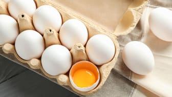 En äggkartong där ett ägg är sönder är ett exempel på en osäljbar vara som kommunens kostenhet får ta hand om i stället för att den slängs.