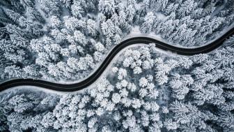 Nordic Cross avslutar året på topp (gånger tre)