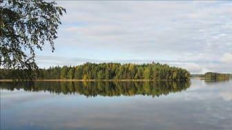 SVU-rapport 2014-17: Vattenskydd – inventering av vägledningar och riktlinjer (dricksvatten)