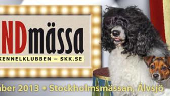Stockholm Hundmässa 2013