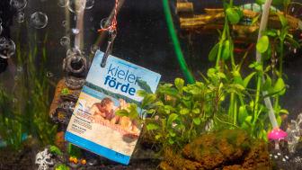 Urlaubsmagazin_KielerFörde_Pressefoto2.jpg