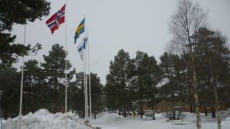Koulutus Nordissa vietetään Pohjolan päivää