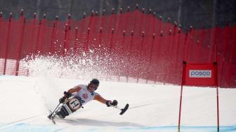 Sveriges Lions stöttar paralympics med 250 000 kronor.