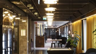 Avalanche Studios Stockholm Office Hallway