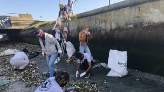 Due to Covid-19, plastic refuse now seriously litters the shoreline of Cape Town's Black River as it enters the Atlantic Ocean