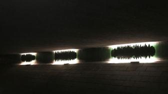 Ljud och ljus med naturtema. Den nya gestaltningen i tunneln är framtagen av konstnären Pia Männikkö i samarbete med White arkitekter. Foto: White arkitekter