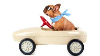 Dags att ge bilen det lilla extra?
