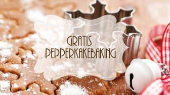 SiO inviterer til  pepperkakebaking som et hyggelig avbrekk i eksamensstresset