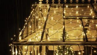 rusta_s4_2021_outdoor_led_light_system-ljusnat