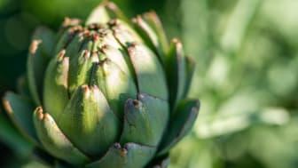 Upptäck Blekinges lokala delikatesser genom att besöka länets gårdsbutiker.