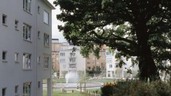 Starrbäcksängen, Stockholm