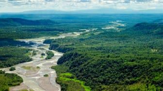 Pastaza-floden i Amazonas. I 2019 har der været mere end 90.000 tilfælde af skovbrande i Amazonas. Foto: Shutterstock