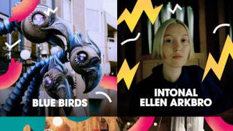 De nederländska fåglarna Blue Birds, elektroniska musikartisten Ellen Arkbro, upplevelsen The Trip med kompaniet Tombs Creatius och en föreställning med Kollektiv Knaster är några av godbitarna i årets kulturprogram på Malmöfestivalen.