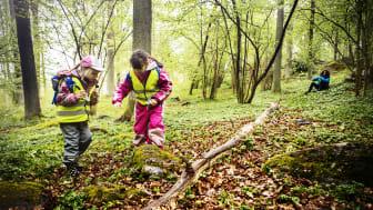 Skogshjältarna