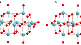 Nanopartikel upptäckt som kan motverka Alzheimer och Parkinson