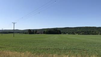 Debattartikel: Kapacitetsbristen i Skåne måste lösas snabbt, läget är akut