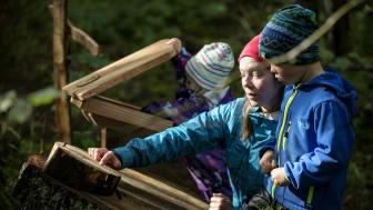 Billingetrollets Trollstig är en av årets nyheter på Billingen Skövde. Foto: Tobias Andersson/Next Skövde