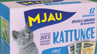 Mjau Kattunge multibox