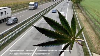 Legalisierung von Cannabis: Verkehrssicherheit hat oberste Priorität