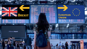 Seeing Stars: 6 ways to prepare your people for post-Brexit travel