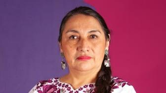 """""""Vi kräver att alla myndigheter, i synnerhet polisen, ska ta hatet och hoten mot samer på största allvar och genast vidta åtgärder"""" säger Carmen Blanco Valer, antirasistisk talesperson för Feministiskt initiativ."""