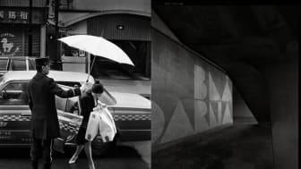 Fotografiska verk av Arne Lind och Anders Thessing visas på Skajs Antikhandel i Stockholm i september. Fotomontage: Arne Lind