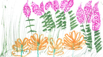 'Butterfly Feast', the winning entry by 6-year-old Freya Currell from Ballymena