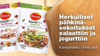 Terveelliset ja maukkaat pähkinäsekoitukset salaattiin ja jogurttiin